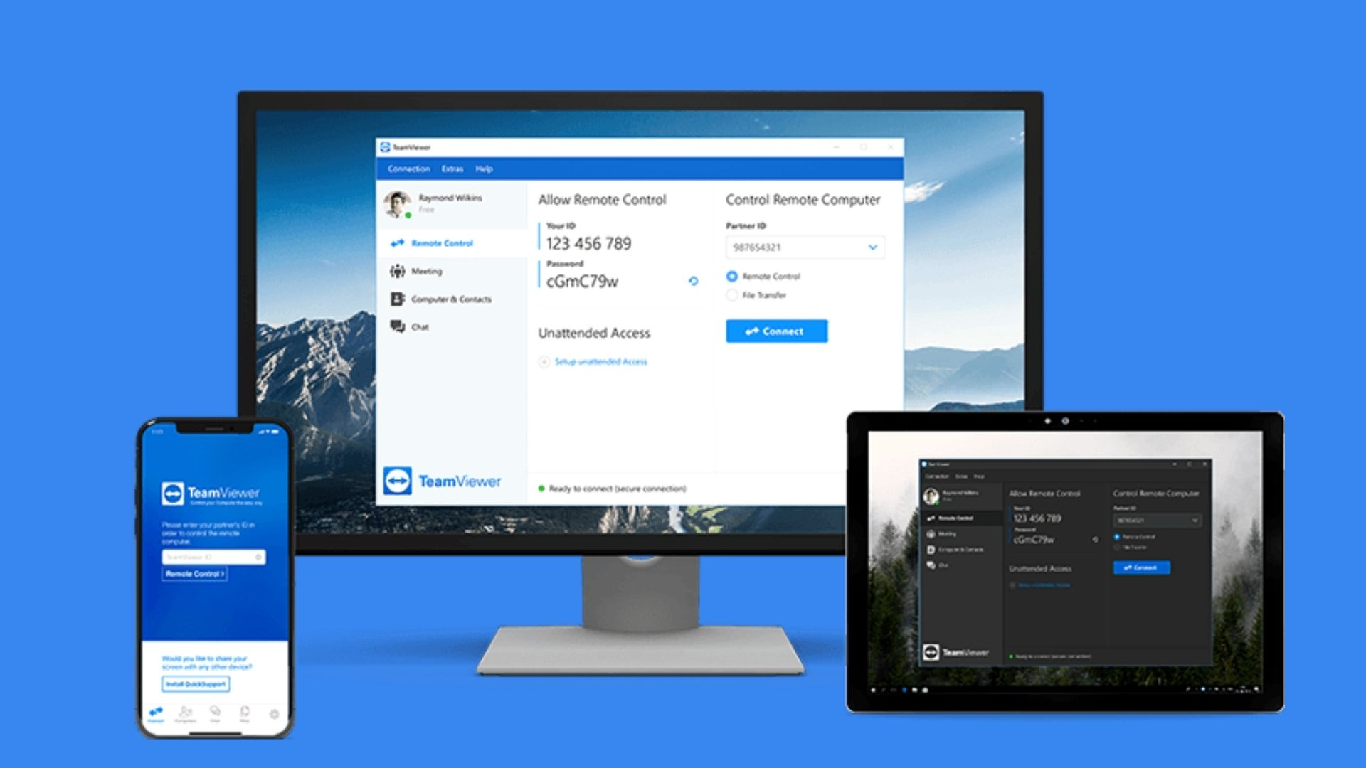 Teamviewer-review